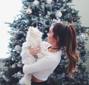 instagram navidad